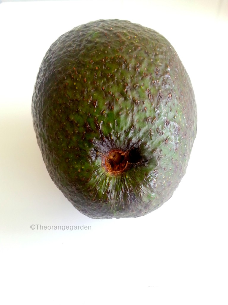 how-to; avocado 1 - theorangegarden