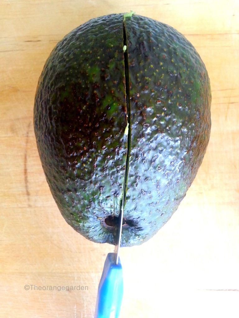 how-to; avocado 4 - theorangegarden