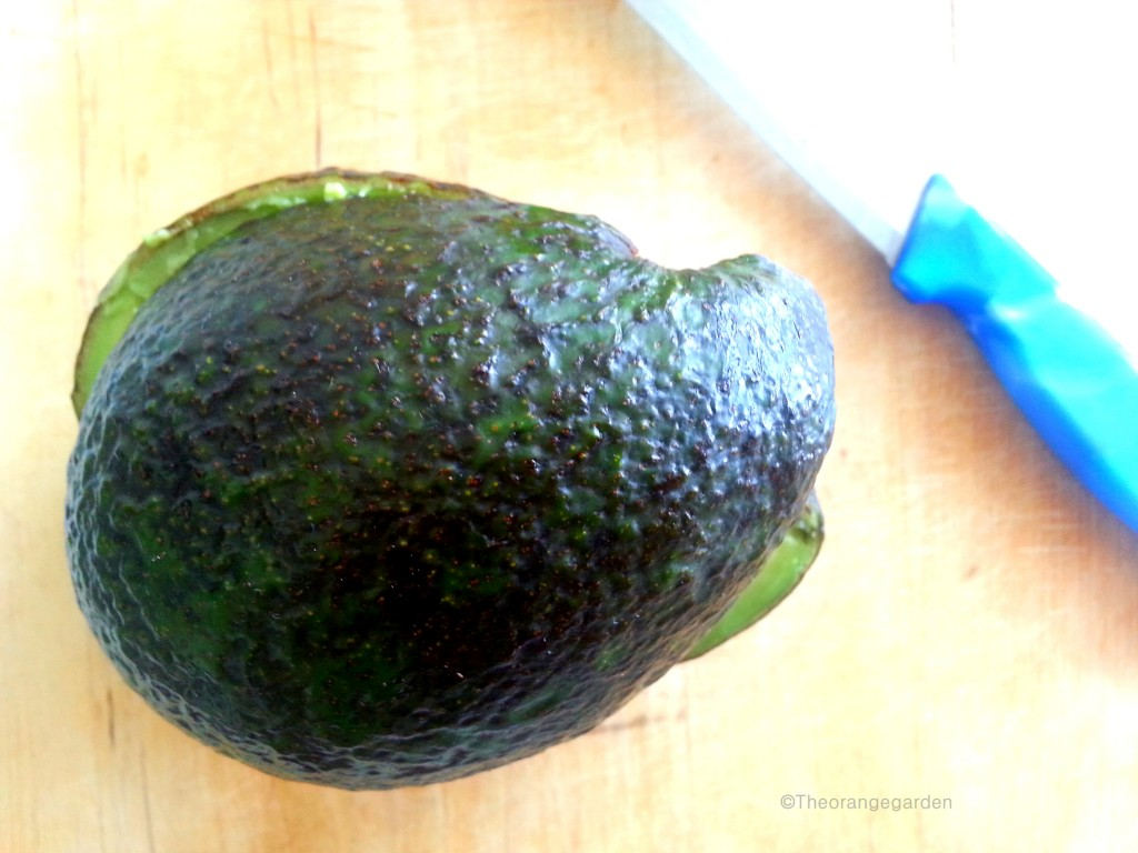 how-to; avocado 5 - theorangegarden