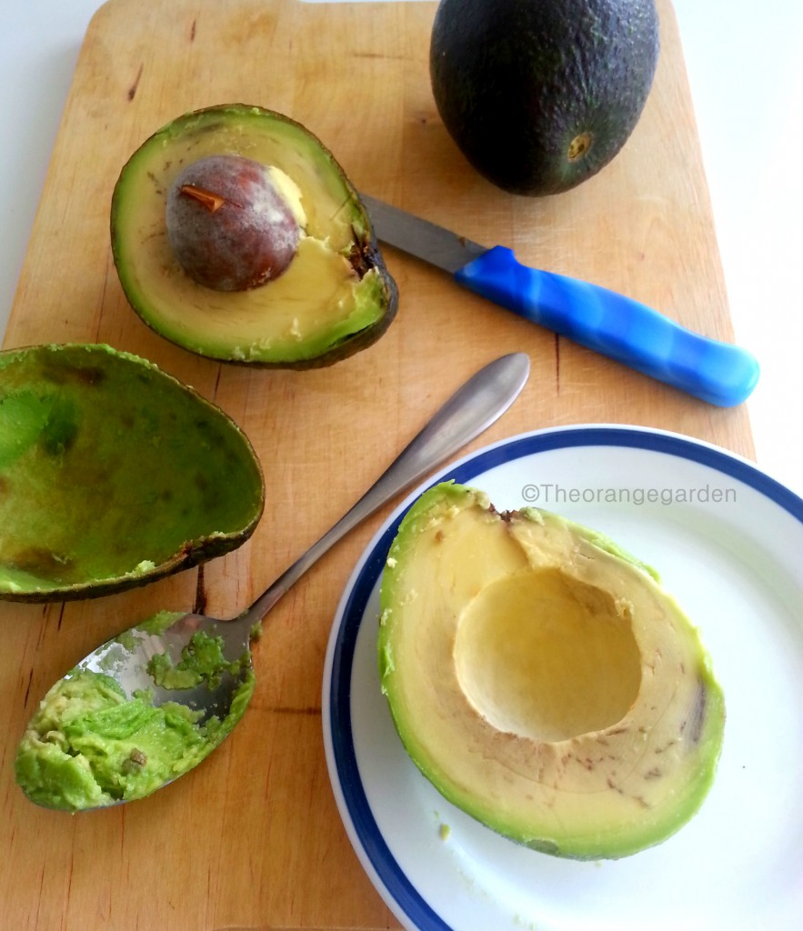 how-to; avocado 7- theorangegarden